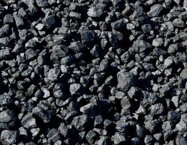 """""""Jeszcze długo węgiel będzie u nas dominujący paliwem"""""""