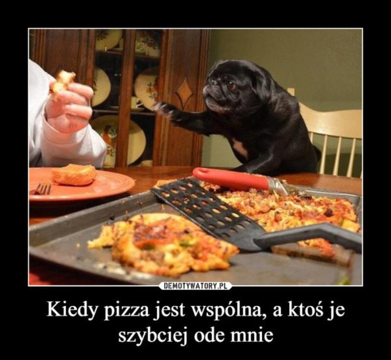 Memy z pizzą w roli głównej