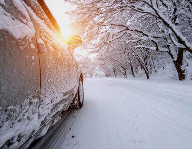 Zapomnijcie o wiosennej aurze. IMGW ostrzega przed śniegiem i przymrozkami