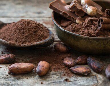 Dlaczego warto pić kakao? Korzyści są... słodkim zaskoczeniem!