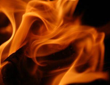 Pożar w Jastrzębiu-Zdroju, będzie sekcja zwłok