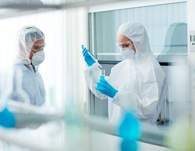 Rekordowy wzrost liczby zakażonych koronawirusem. Najnowszy raport MZ