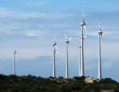 Europa podyskutuje w Polsce o energetyce wiatrowej