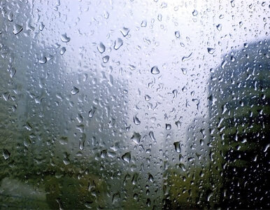 Pogoda na niedzielę: W wielu miejscach deszcz i burze