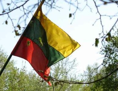 Litwa: rząd wesprze szkoły litewskie w Polsce