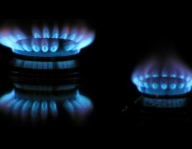 PSE Operator i GDF Suez Energia Polska podpisały umowę gazową