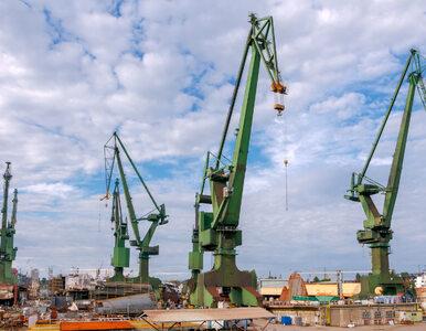 Greenpeace znów blokuje dostawę węgla w Gdańsku. Aktywiści weszli na dźwigi